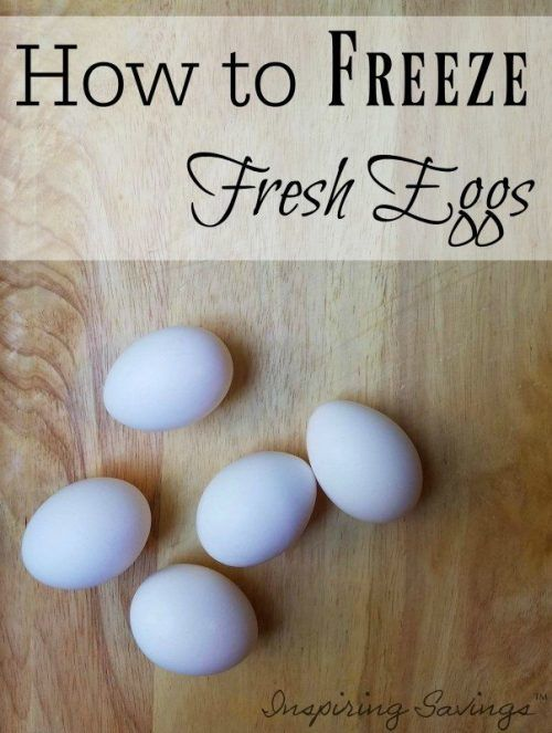 Do you have a lot of eggs Are you looking for a simple way to preserve them Freezing eggs can solve your problem. See your step by step instructions