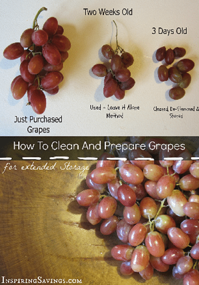 Serioulsy the easiest way to clean and prepare grapes. I eat these guys by the handfuls. This tip is so helpful