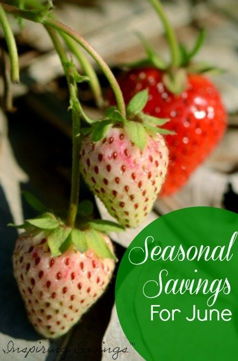 A great way to save money is to take advantage of seasonal savings. What is in Season for June can help you save all month long. Read More Here.
