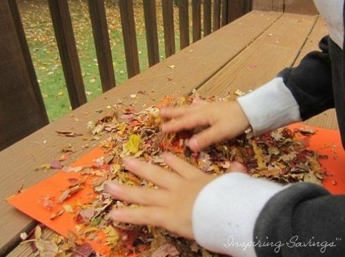 These dimensional drawings are made using leaves from your yard. Your kids will have a blast making their own leaf glitter. Turn your leaves into Glitter