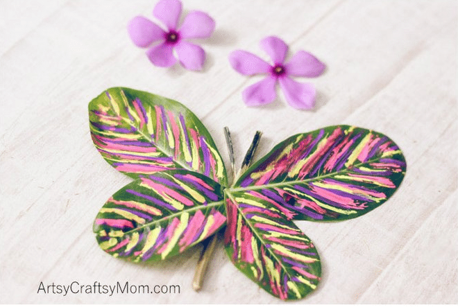 leaves made into a butterfly