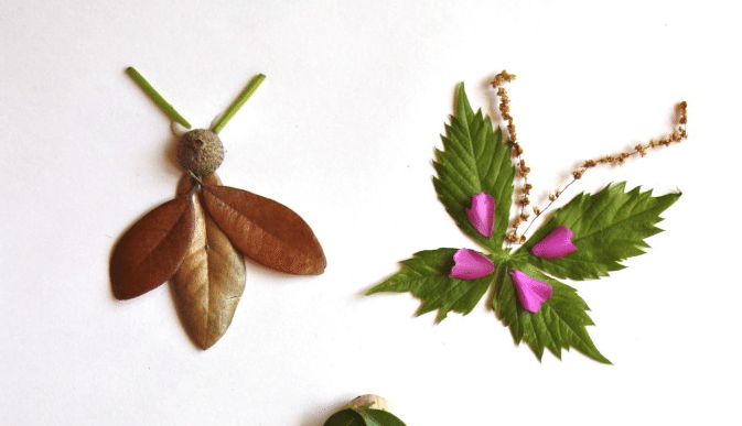leaves from nature turned into creative insect craft